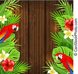 Parrots on a wooden background