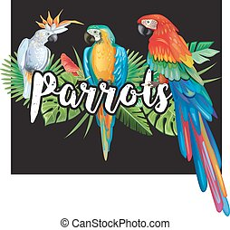 Parrots with palm leaves