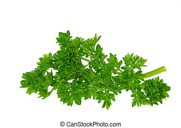 parsley 11