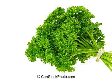 parsley 16