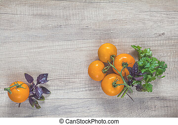 Parsley and basil bunch of bouquets, branch yellow tomatoes on light wooden surface.