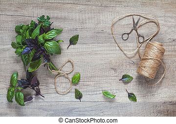 Parsley and basil bunch of bouquets, scissors and rope cord on light wooden surface.