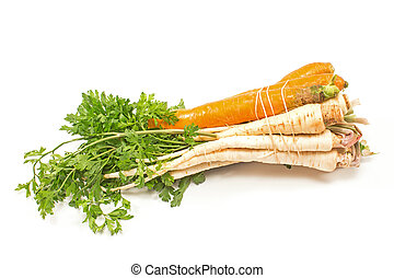 Parsley and carrot isolated on white background
