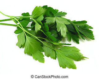 Parsley - Bunch of parsley over a white background