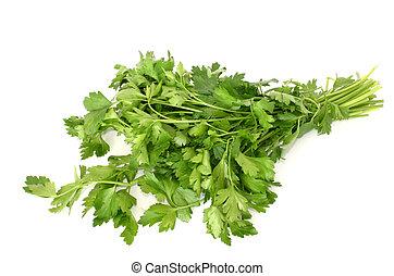 parsley isolated #2