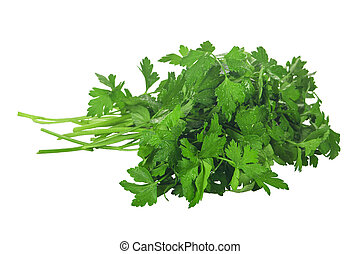 Parsley isolated on white background close-up - A bunch of ...