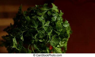 parsley leaves - Fresh organic parsley with parsley leaves