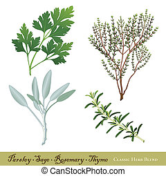 """Classic herb blend of Parsley, Garden Sage, Rosemary and English Thyme. Immortalized in traditional English ballad """"Scarborough Fair"""". See other herbs and spices in this series. EPS8 compatible."""