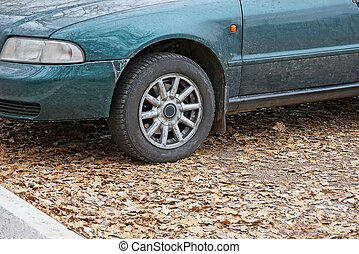 part of an old green car with a wheel stands on the road in fallen brown leaves