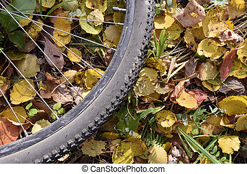 Part of bicycle wheel, which lies on fallen autumn leaves