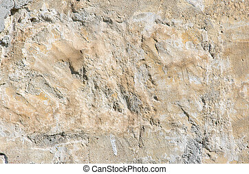 Part of the grange crumbling plaster on the old wall of the...