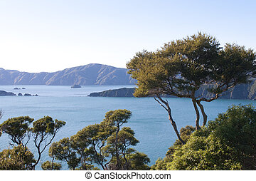 Part of the Queen Charlotte track at Marlborough Sounds in New Zealand Part of the Queen Charlotte track at Marlborough Sounds in New Zealand