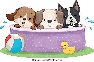parte consorzio, cani, illustrazione