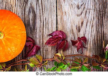 Parthenocissus with Orange Pumpkin on Wooden Rustik...