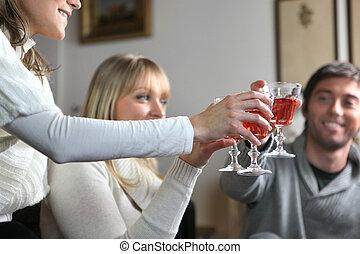partia, obiad, przyjaciele, posiadanie, dom