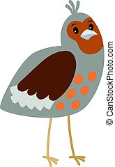 Partridge cartoon bird icon