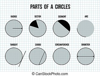 Parts of a circles on math paper background