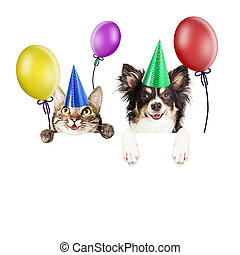 Party Cat and Dog Over White Banner