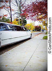 Party Limousine at Sidewalk