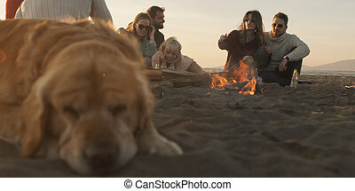 party, sandstrand, friends, freudenfeuer, entspannend