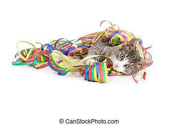 party streamers and a cat - little grey tiger kitten playing...