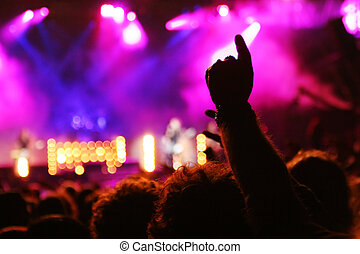 people on a party/concert