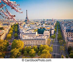 paryż, na, wiosna