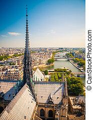 paryż, notre paniusia