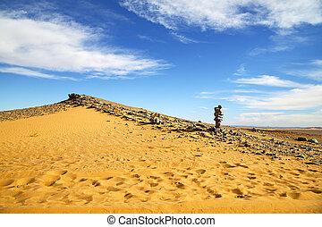 pas, désert, pierre, fossile, vieux, ciel