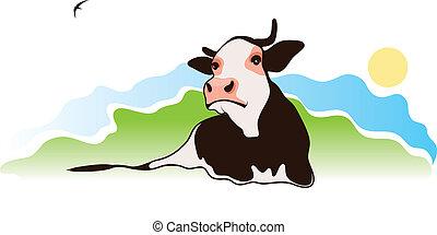 pascolo, mucca