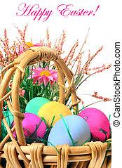 pasen, eieren kleurde, in, de, mand, op, de, witte achtergrond