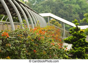 paso superior, singapur