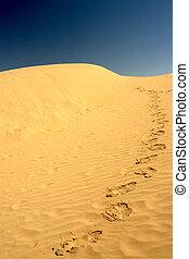 pasos, en, el, desierto