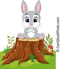 pasqua, cartone animato, coniglietto