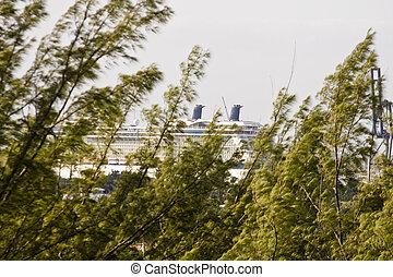 passé, bateau, venteux, arbres, croisière
