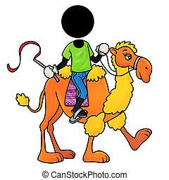 passagier, kameel