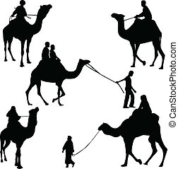 passagiers, kameel