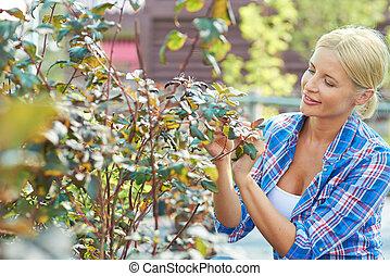 passatempo, jardinagem