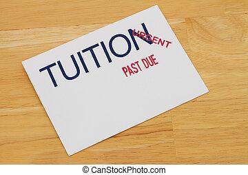passato, istruzione, dovuto, pagamento