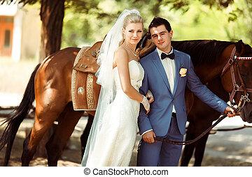 passeio cavalo, em, a, especiais, dia casamento