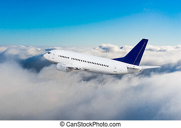 Passenger airliner flight in the blue sky