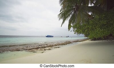 Passenger Boats Tied near a Tropical Beach in the Maldives