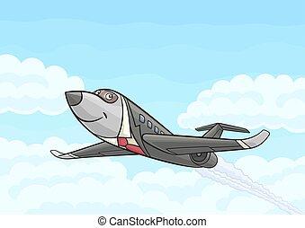 Passenger business aircraft.