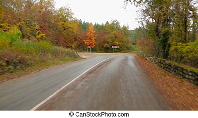Passenger Car Moving In Autumn Forest Along Winding Road