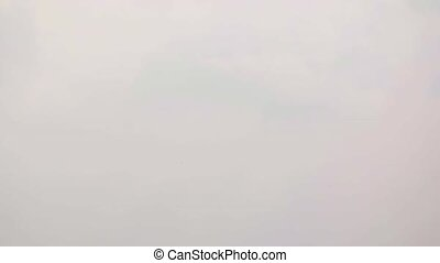 Passenger Jetliner Taking Off on a Foggy Day. Video - Twin...