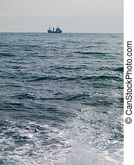 passenger ship on the horizon and clear sky