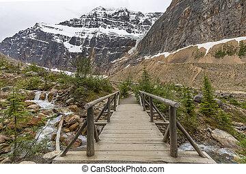 passerella, sopra, uno, flusso, in, il, canadese, montagne rocciose