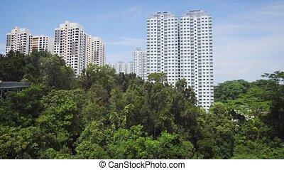 passerelle, telok, singapour, parc, colline, cityview, blangah