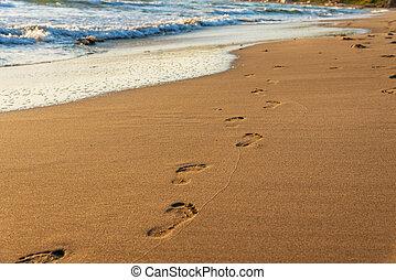 passi, su, il, spiaggia.