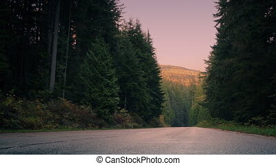 Passing Across Mountain Forest Road At Dawn - Tracking shot...